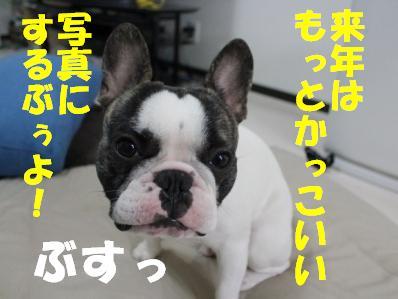 6-1_20101213135114.jpg