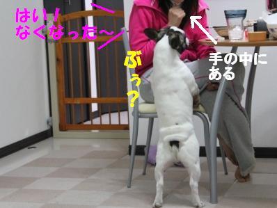 6-1_20110208140651.jpg
