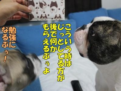 6-1_20110805135457.jpg
