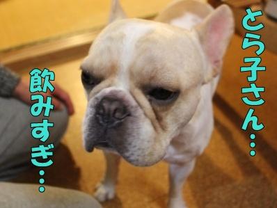 6-1_20111012135138.jpg