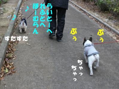 6_20110118121246.jpg