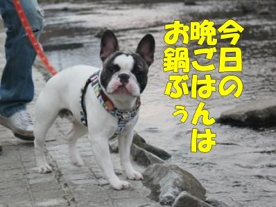 6_20110527135506.jpg