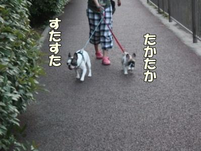 7-1_20110803134919.jpg