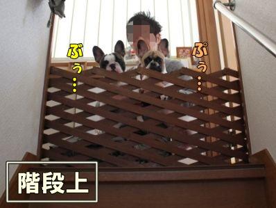 7-1_20120117164732.jpg