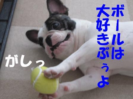 7_20100805143626.jpg
