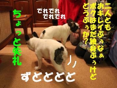 7_2011011315290<br />1.jpg