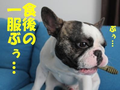 7_20110420095832.jpg
