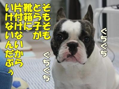 7_20110609143853.jpg
