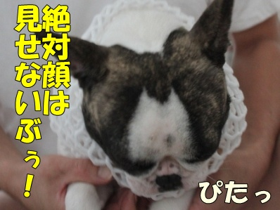7_20111021132426.jpg