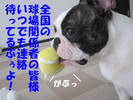 8-1_20100805150344.jpg