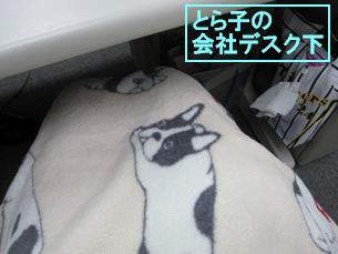 8-1_20101210133627.jpg