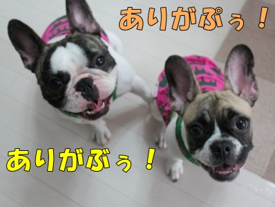 8-1_20111004165053.jpg