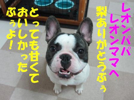 9-1_20100910105752.jpg