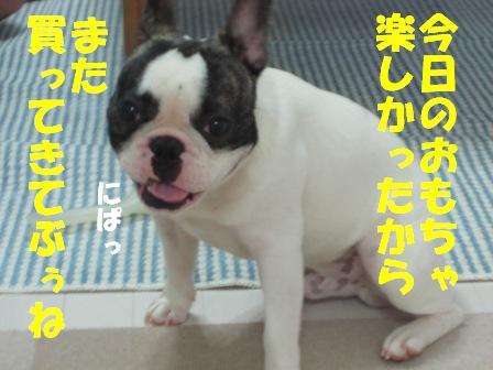 9_20100709120115.jpg