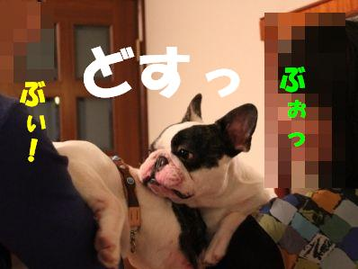 9_20110113152900.jpg