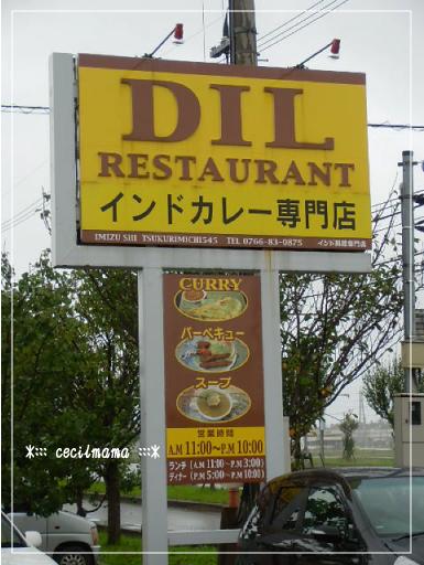 DIL_3.jpg