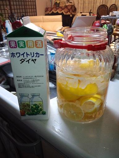 20141211_レモン酒6