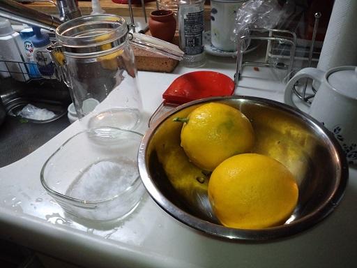 20141213_塩レモン