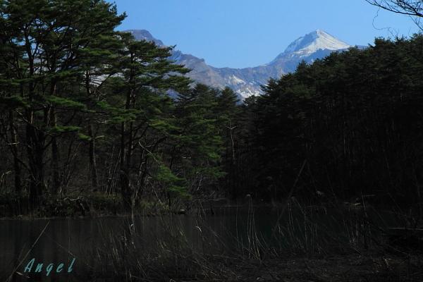 五色沼の磐梯山(122)