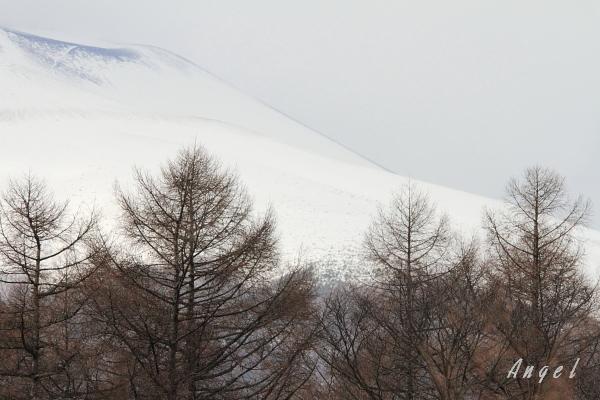 浅間山(7226)