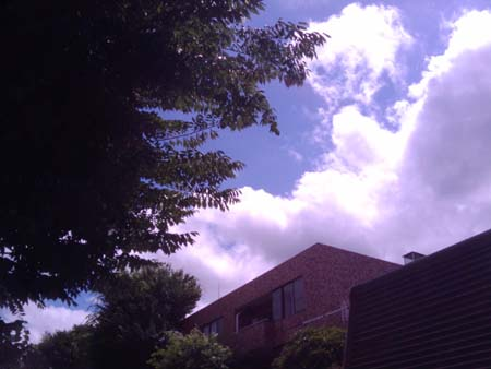 summer03.jpg