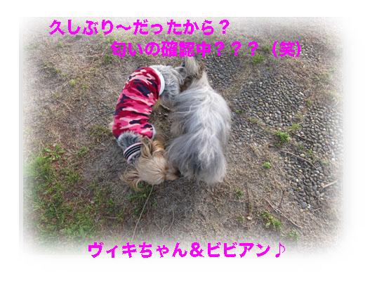 IMG_0862.jpg