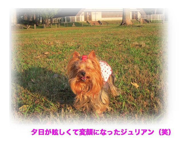 IMG_2088.jpg
