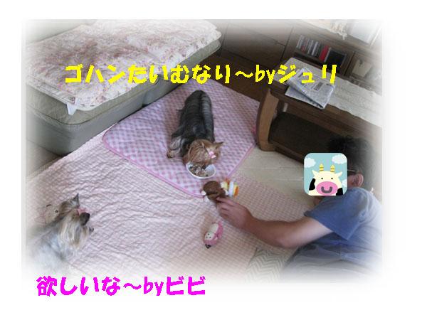 IMG_2414.jpg