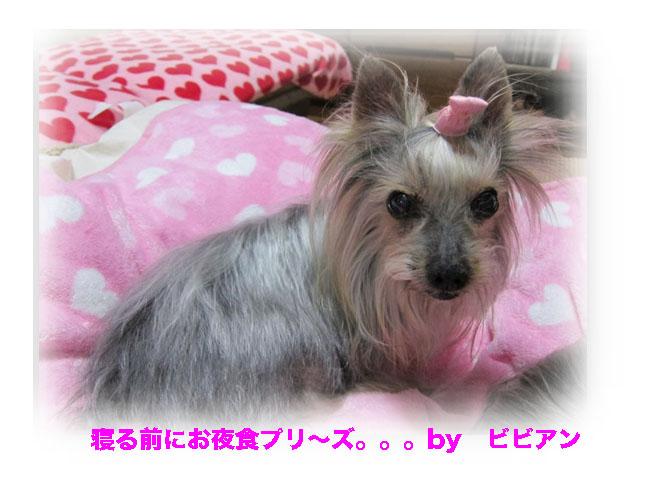 IMG_2590.jpg