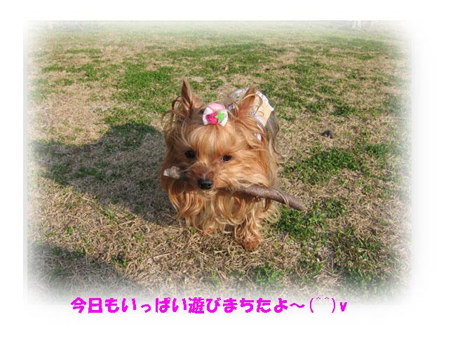 IMG_3728.jpg