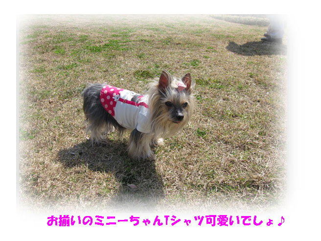 IMG_3882.jpg