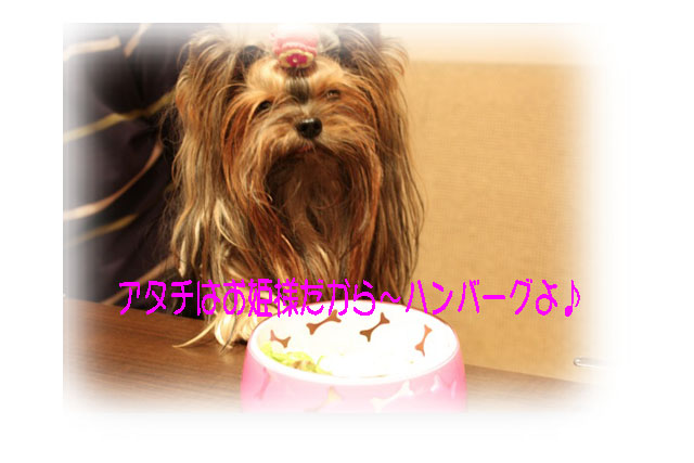 IMG_4701.jpg