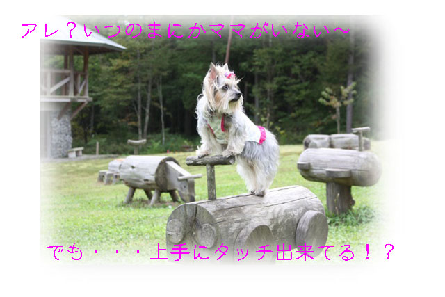 IMG_4895.jpg