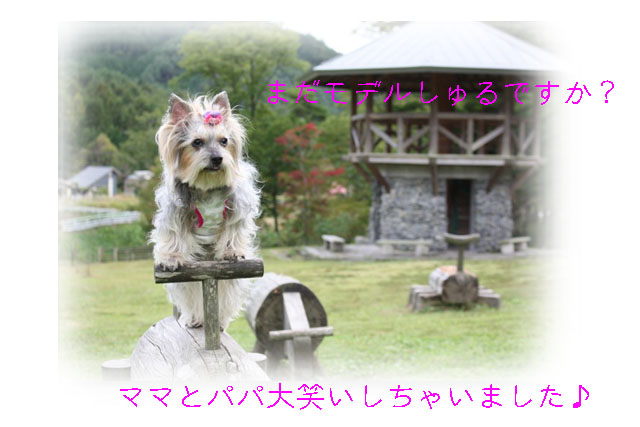 IMG_4898.jpg