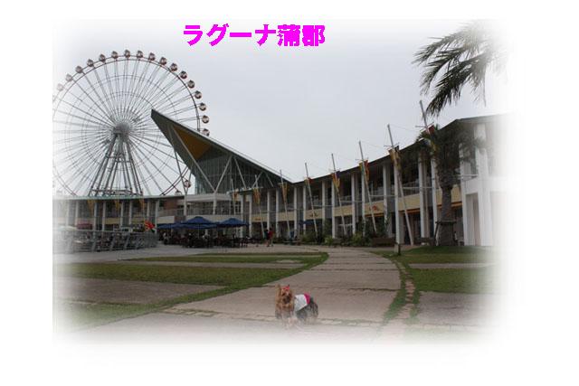 IMG_6909.jpg