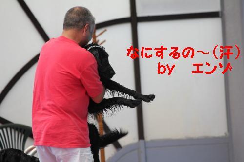 2010_0619画像0012