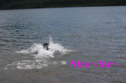 2010_0717画像0014