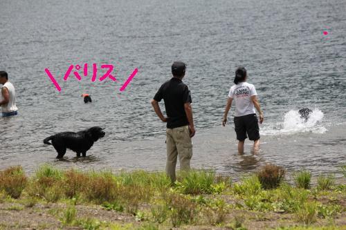 2010_0717画像0017