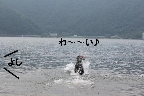 2010_0814画像0009