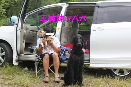 2010_0814画像0007