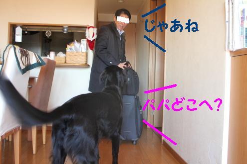 2011_0118画像0001