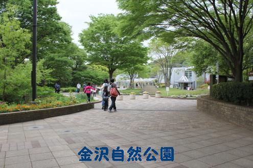 2011_0503画像0003