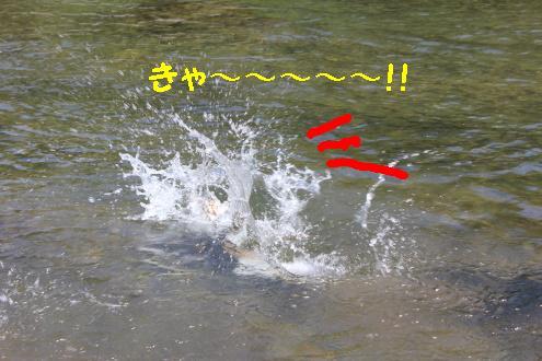 2011_0514画像0013