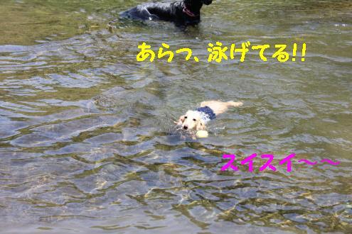 2011_0514画像0015