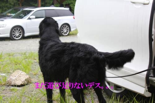 IMG_2921_convert_20110626165653.jpg
