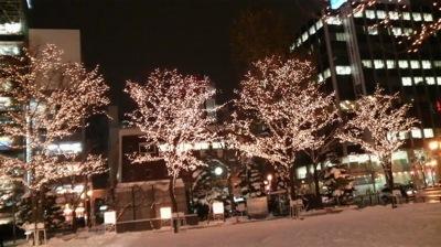 札幌市大通ホワイトイルミネーション
