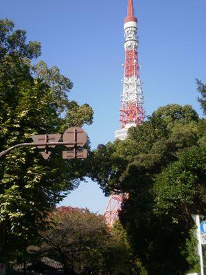 東京タワー-up-01