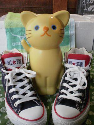 猫ダストボックス06