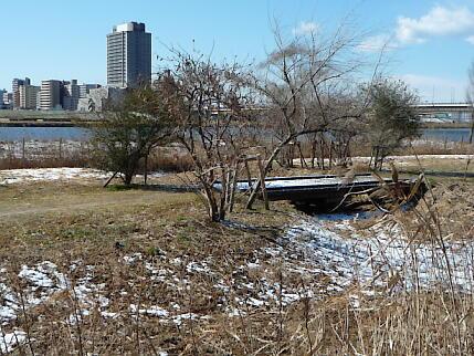 冬の木橋。春には水草が綺麗に。