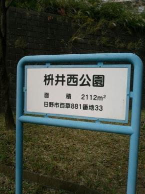 DSC_1300.jpg